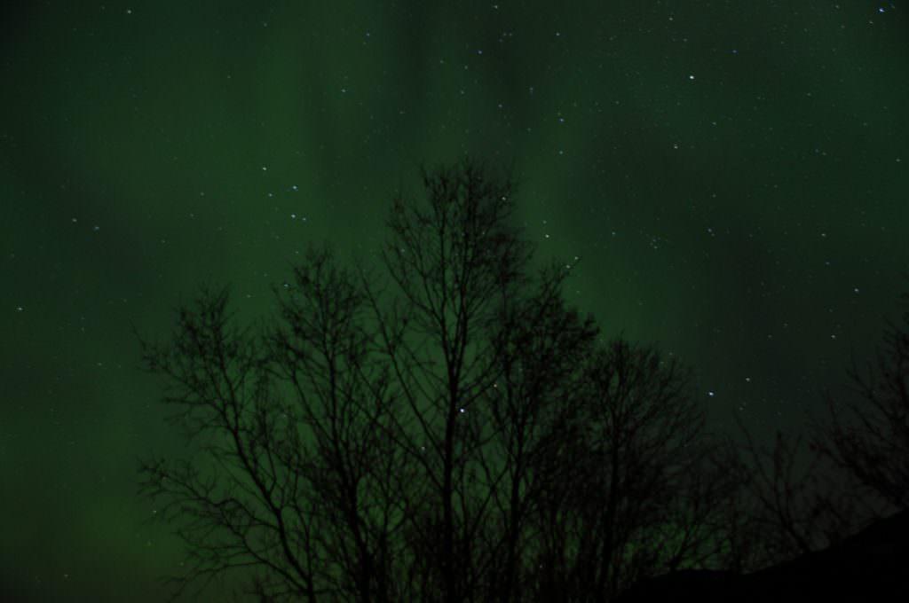 Aurora boral