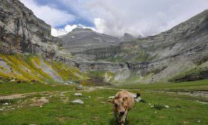 Ordesa y el monte perdido – Pirineo aragonés