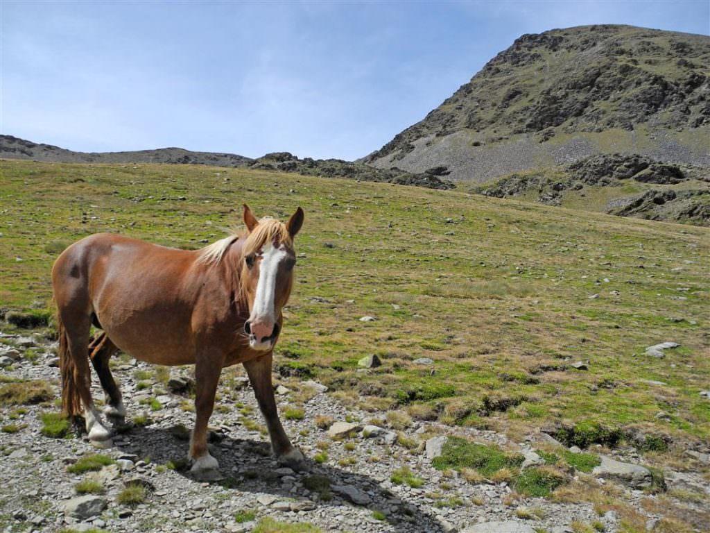 Vall de Nuria