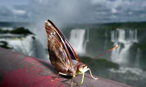 Argentina, Iguazú
