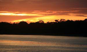 Brasil, Amazonas