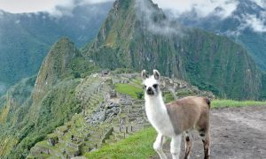Perú, Valle sagrado – Machu Picchu