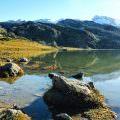Lagos de Covadonga (Asturias)