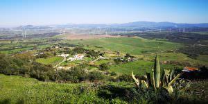 Medina - vistas